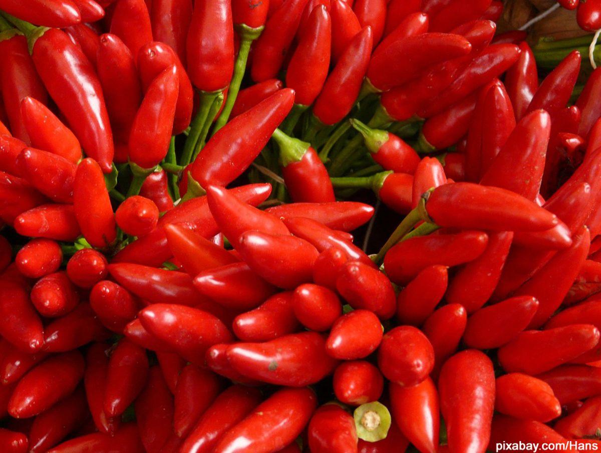Anti Aging Lebensmittel Chili