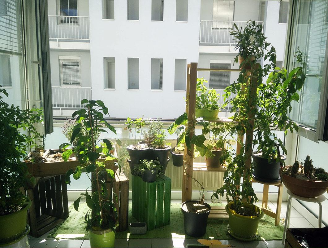 kleiner-balkon