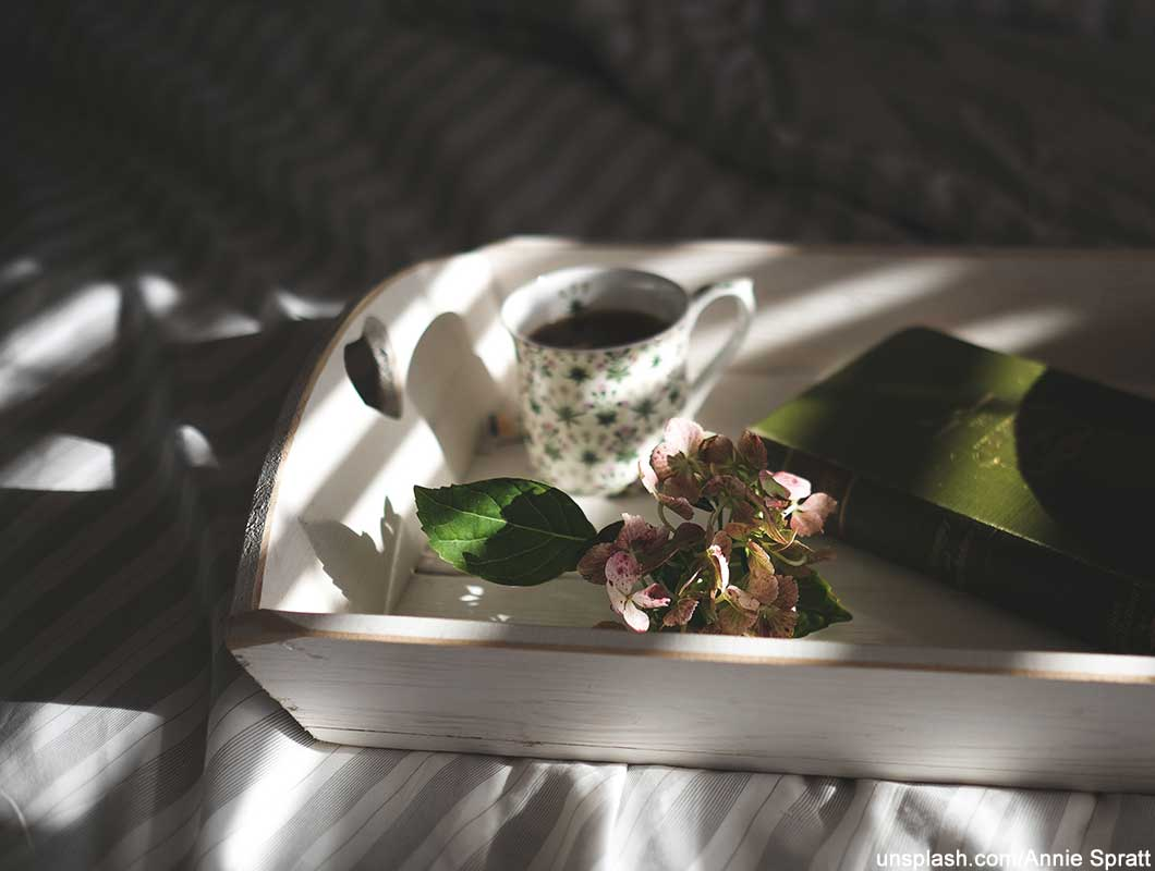 Anti Aging Lebensmittel Grüner Tee
