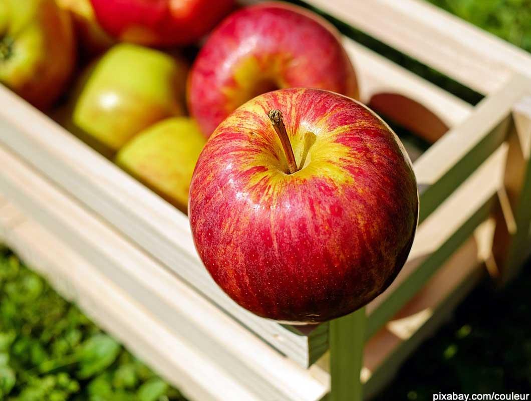 gesunde nahrungsmittel apfel