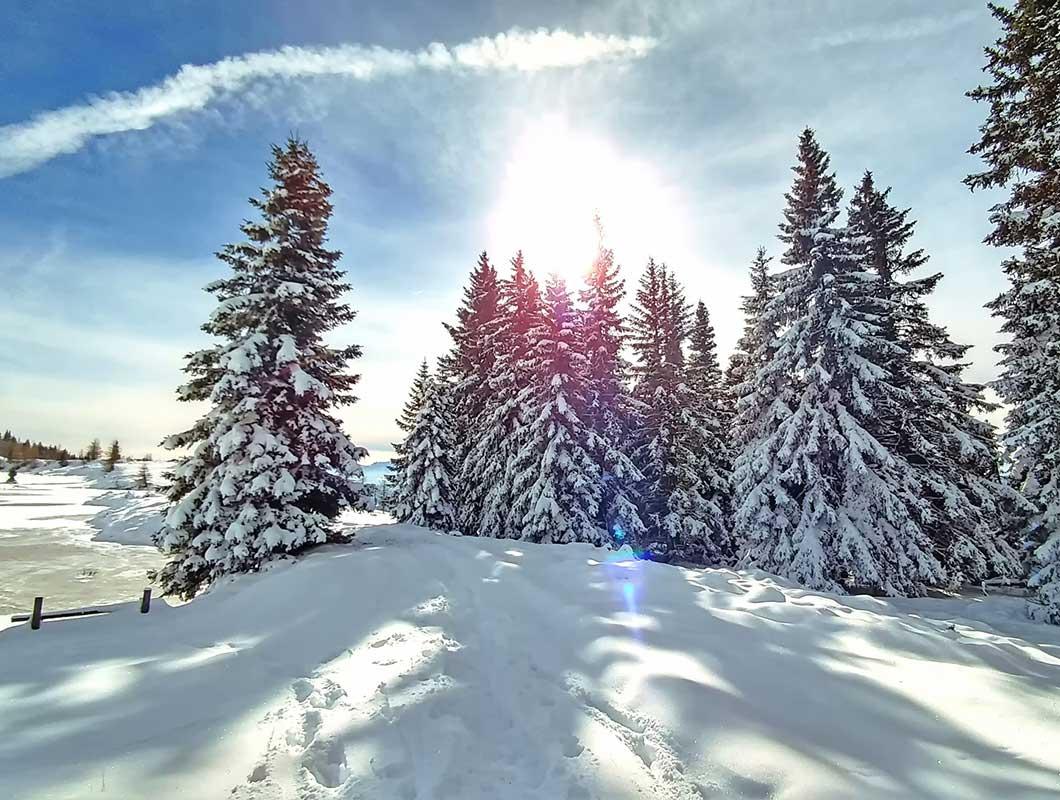 Was Kann Man Im Winter Machen Diese 30 Tipps Verraten Es Dir