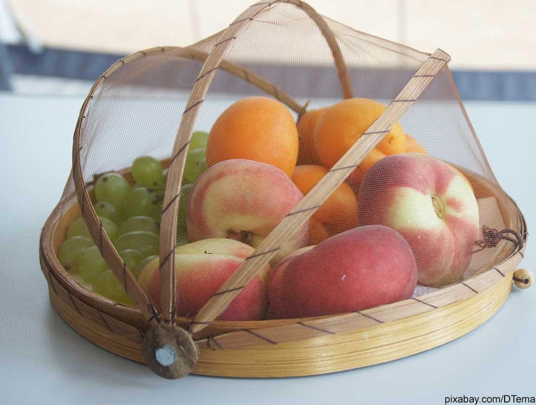 Fruchtfliegen Vorbeugen Und Beseitigen Mit Hausmitteln