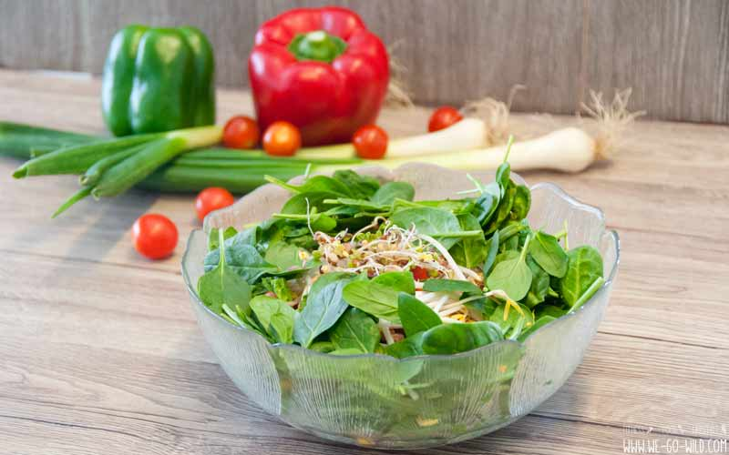 Salatrezepte zur Fettverbrennung