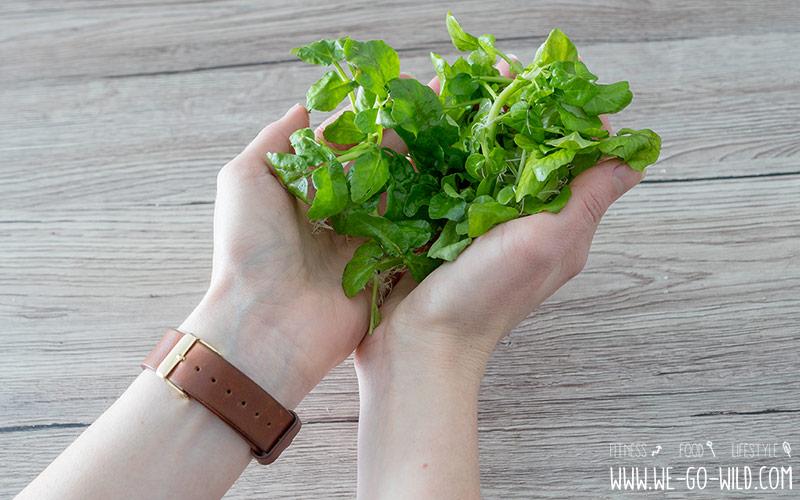 Brunnenkresse für den Wildkräuter-Salat