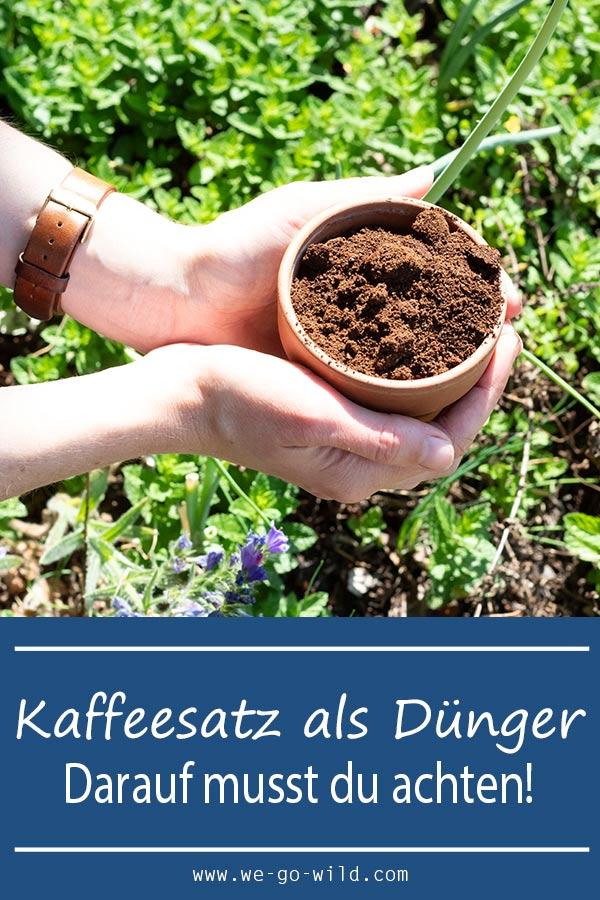 Kaffeesatz Als Dünger : kaffeesatz als d nger f r garten und topfpflanzen we go wild ~ Watch28wear.com Haus und Dekorationen